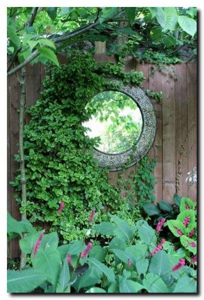 ronde-spiegel-schutting-in-tuin-tussen-klimplanten