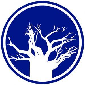logo-bao-med